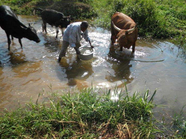 Water Crisis 3 Image
